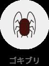 ゴキブリ(対象生物)